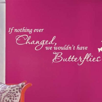 If nothing ever changed wall decal