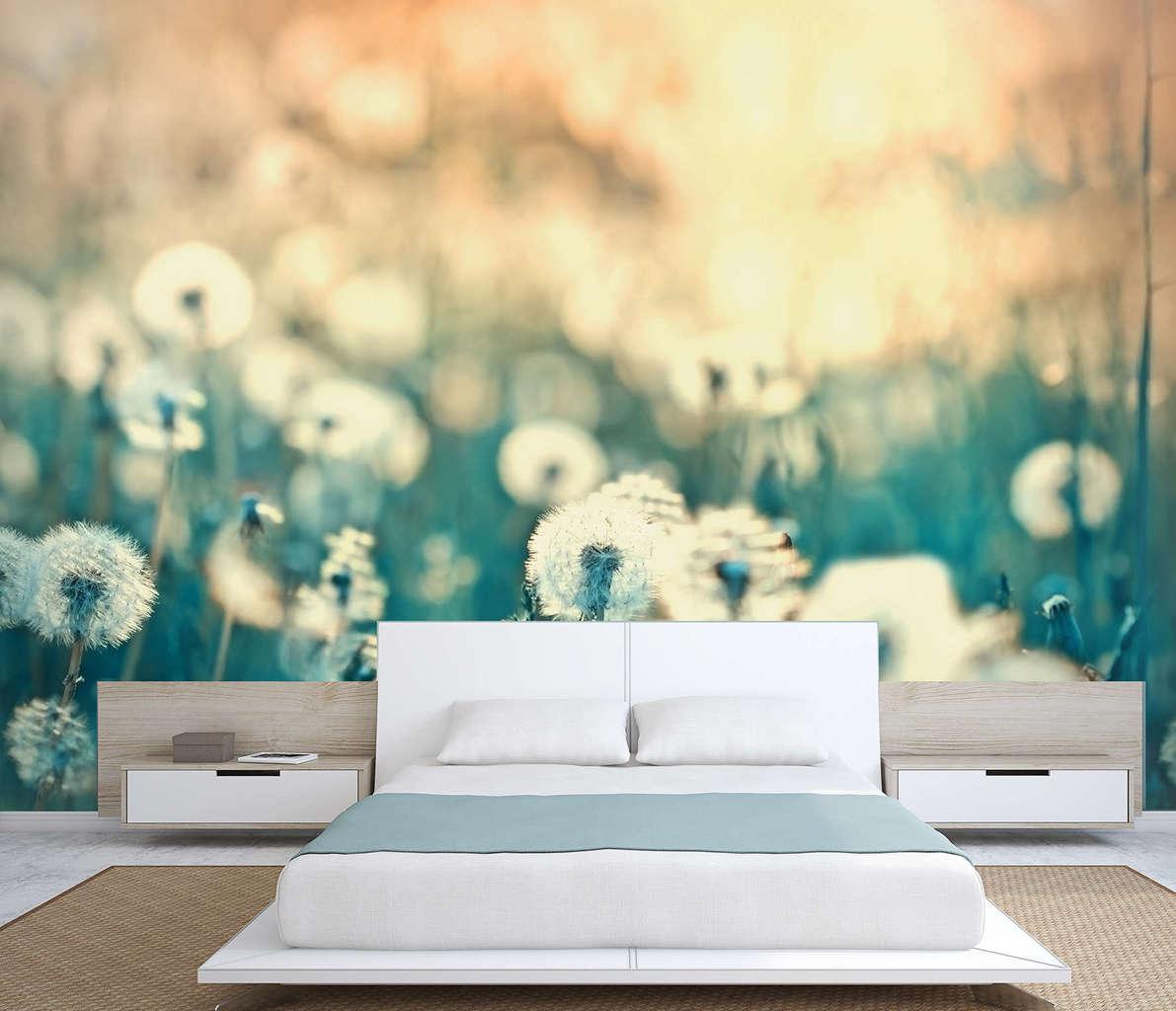 Dandelion sunset wall mural | wall mural | wall murals