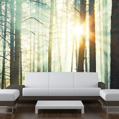 Sunbeam Forest Wall Mural