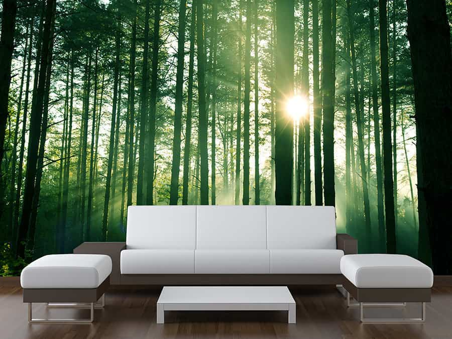 Green Forest Trees Wall Mural