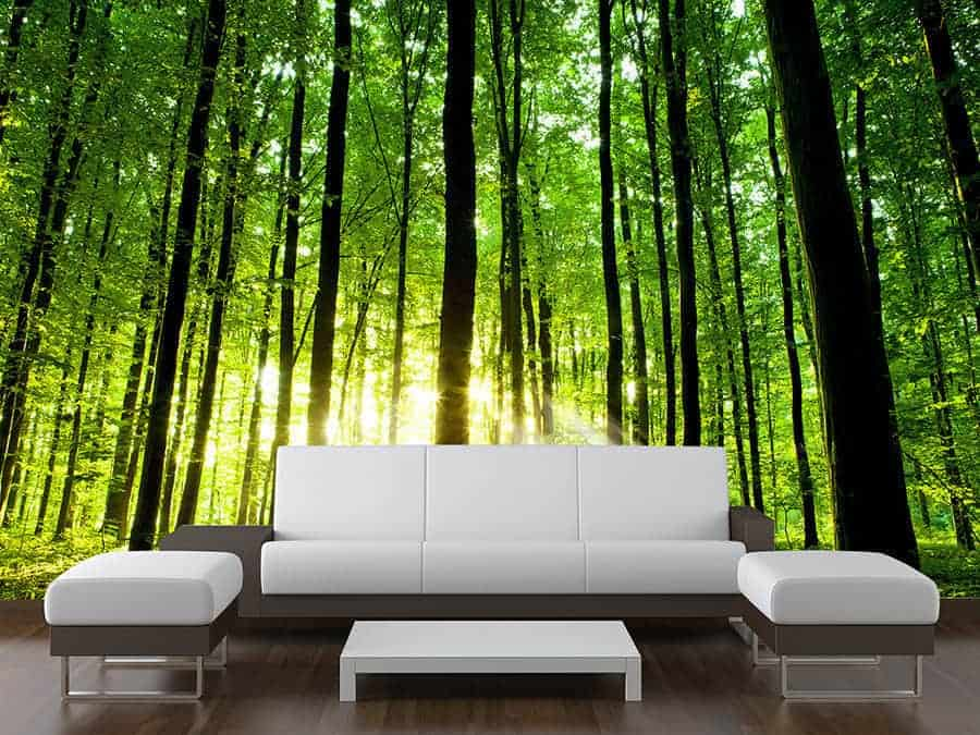 Green Trees Forest Wall Mural