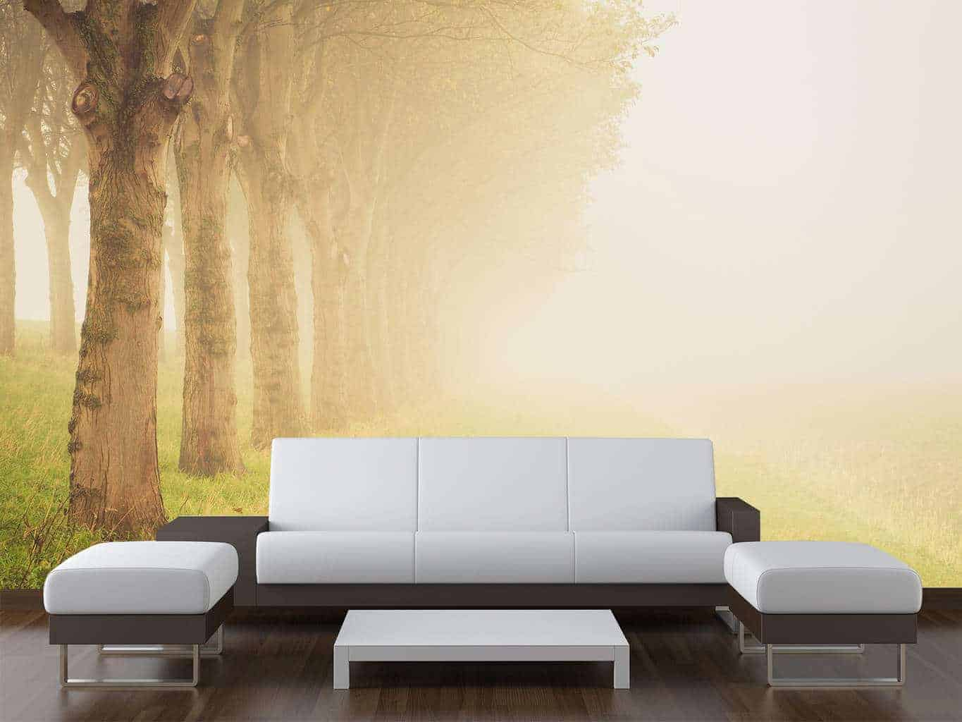 Misty Trees Wall Mural