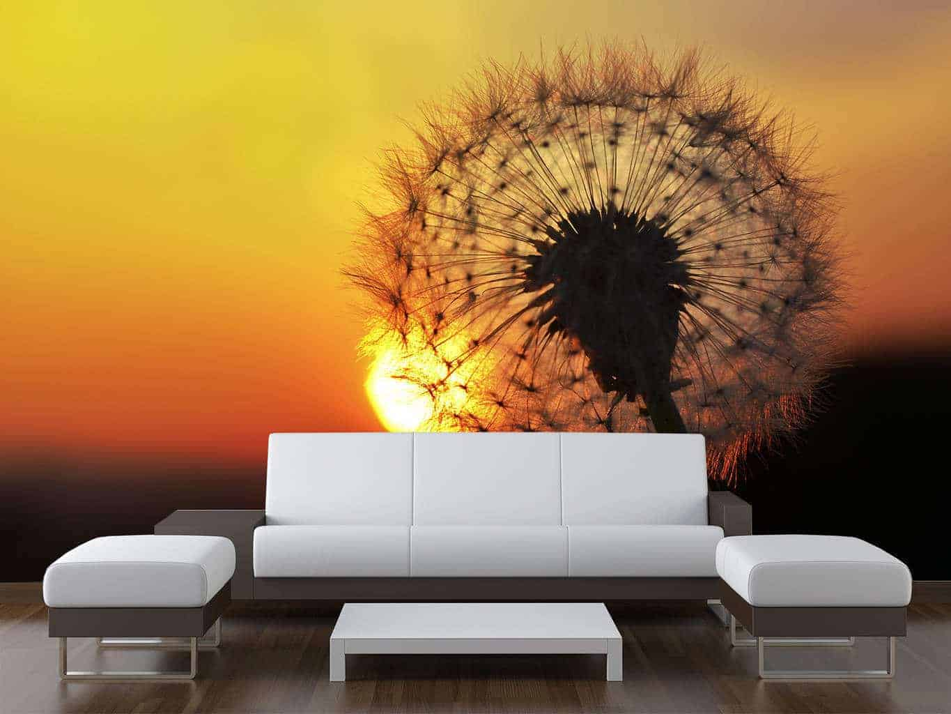 Dandelion sunset wall mural wall murals for Dandelion wall mural