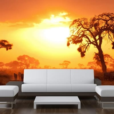 African planes sunset wall mural