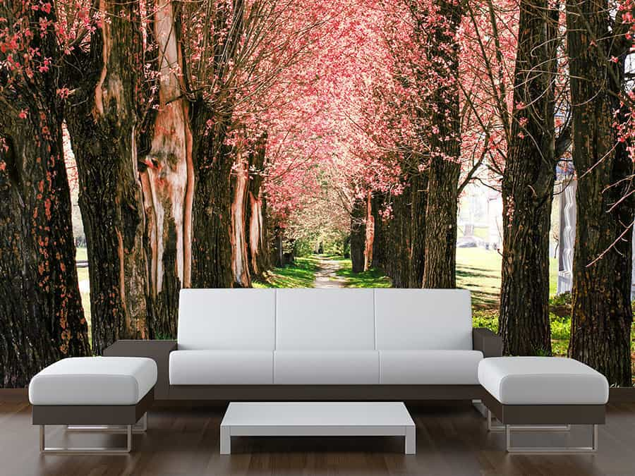 blossom tree path wall mural made to measure wall murals. Black Bedroom Furniture Sets. Home Design Ideas