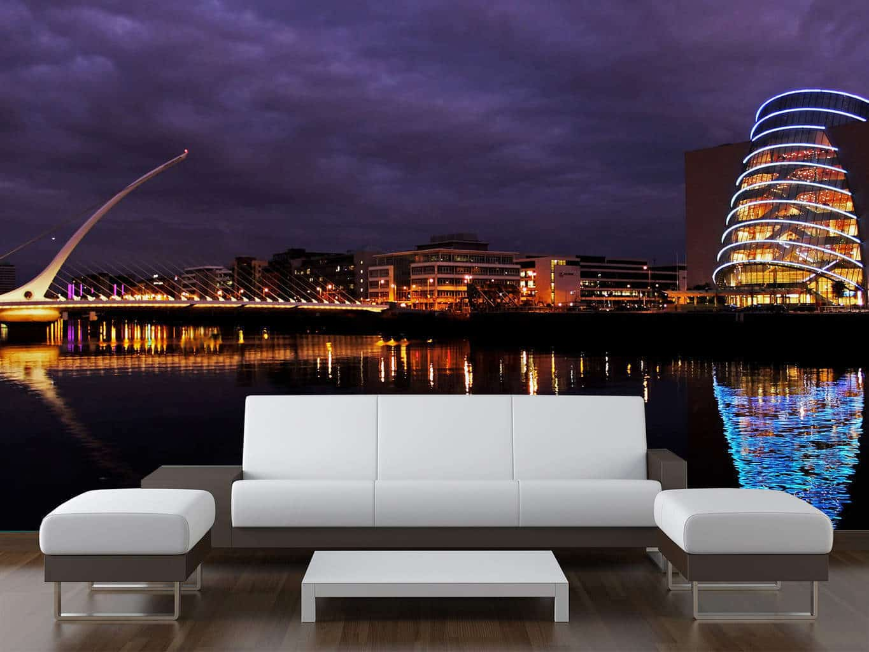 Dublin City Nighttime Wall Mural