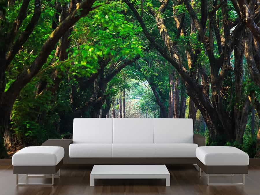 Arching Green Trees Wall Mural
