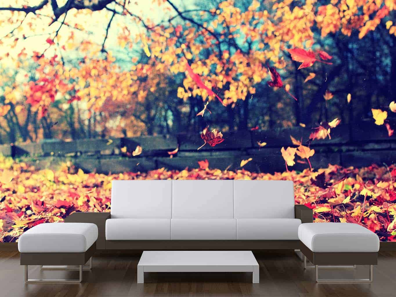 Falling autumn leaves wall mural wall murals for Autumn wall mural