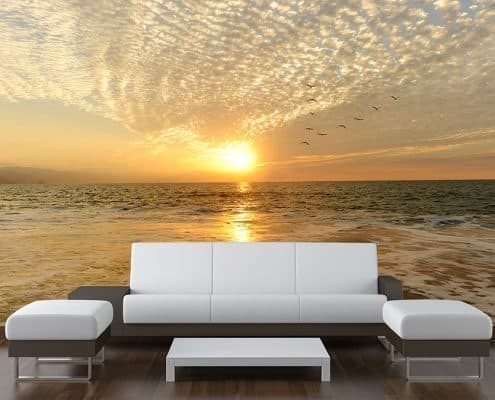 Sea Sunset Birds Wall Mural