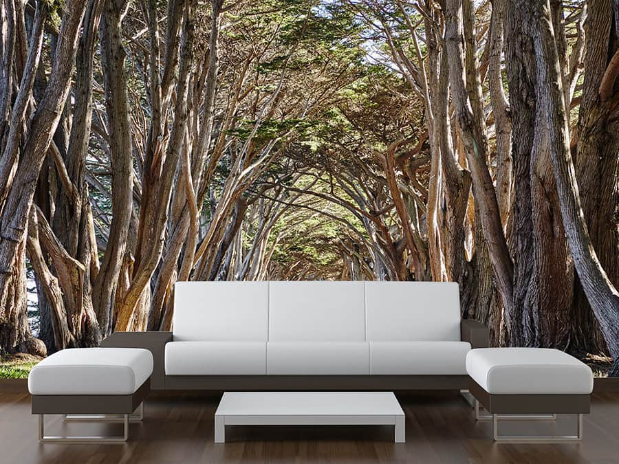 Tree Arch Wall Mural