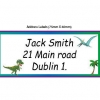 Dinosaurs School Name Labels Pack